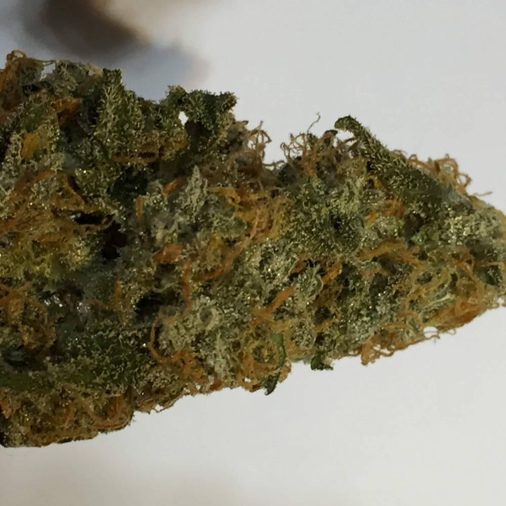 Fa$t Budz Green Crack week 11. 2 week cure