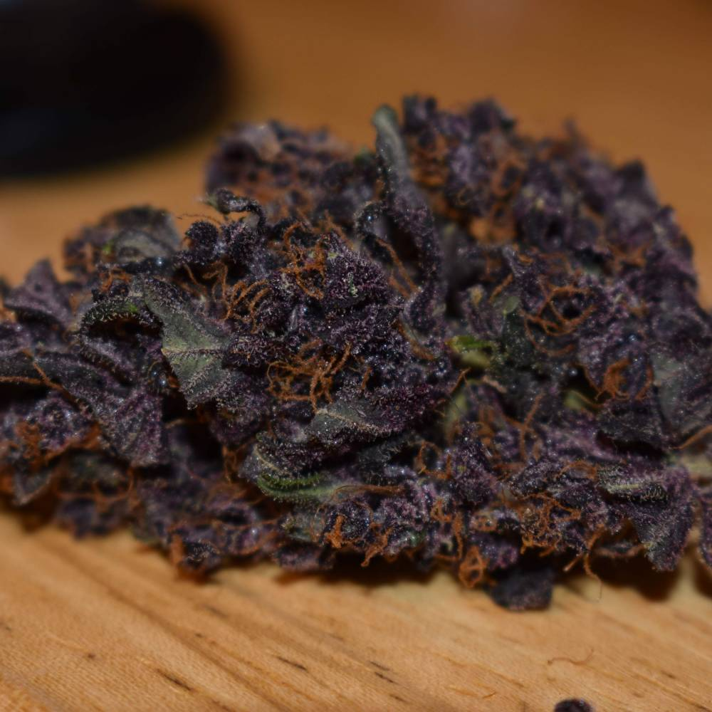 BlackBerry week 8. Dried Bud Shot NO FILTERS/EDITING!!!